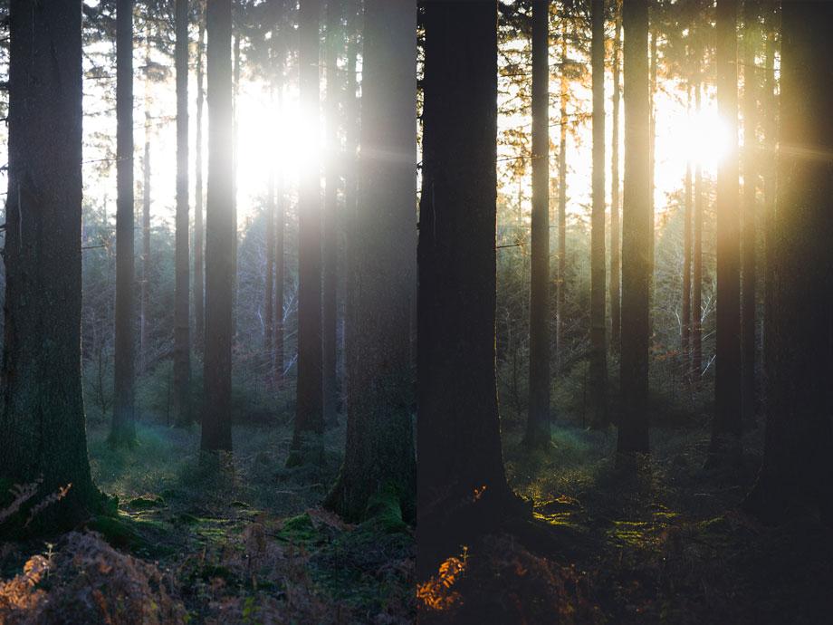 Voordelen van naturel fotos